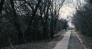 Идти на получившуюся отказ дорогу окруженную темными обнаженными деревьями акции видеоматериалы