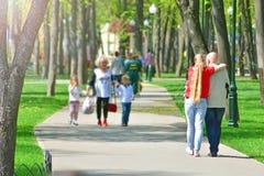 Идти совместно вдоль переулка парка стоковые фото