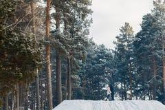 Идти с собакой в зиме стоковая фотография