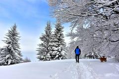 Идти человека сцены Snowy зимы стоковые фото