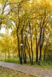 Идти через город осени Стоковые Изображения