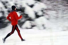 идущая зима Стоковые Изображения RF