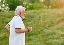Идущая старая на предпосылке зеленой травы Стоковые Фото