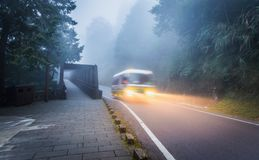 Идущая шина с светом на местной дороге внутри тропического леса стоковая фотография