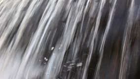 "Идущее болгарское река ""Luda Mara ""около треноги краткости Petrich видео- видеоматериал"