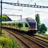 Идущий поезд в террасах виноградника Lavaux Швейцарии Стоковые Изображения