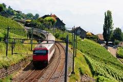 Идущий поезд на тропе Швейцарии террас виноградника Lavaux Стоковые Изображения