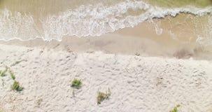 Идущий сверху вниз вид с воздуха волн воды Чёрного моря встречает дюны пляжа с белым песком в регионе Kiliya, украинской Бессараб акции видеоматериалы