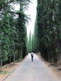 Идущий человек стоковая фотография