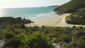 Идущ вниз с холма для прогулки в мысе Wilsons в Австралии, в заливе вискиа, съемка тележки правая видеоматериал