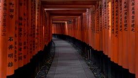 Идущ внутри Fushimi Inari Taisha, синтоистской святыни в Киото, Японии сток-видео