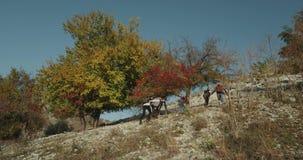 Идущ на крышу группы в составе горы друзья, на выставке, в солнечном дне видеоматериал