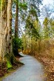 Идущ след Trans Канады около общины Bonson в лугах Pitt, ДО РОЖДЕСТВА ХРИСТОВА, Канада Стоковые Изображения RF
