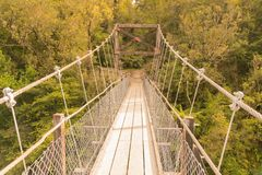 Идя деревянный висячий мост водя к тропическому глубокому лесу стоковые фотографии rf