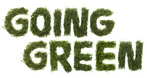 Идя зеленая трава Стоковые Изображения RF