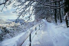 Идя прогулка в Зальцбурге, снежный ландшафт зимы стоковое изображение rf