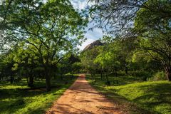 Идя следы в Mihintale, Шри-Ланке стоковая фотография rf