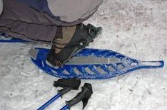 идя снежок Стоковая Фотография RF