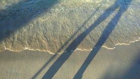Идя тень около пляжа видеоматериал