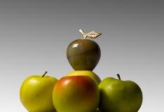 иерархия яблока Стоковое Фото