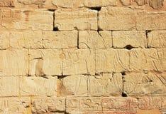 иероглифы Египета старые Стоковые Изображения RF