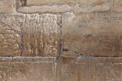 Иерусалим - западный close-up стены Стоковые Фотографии RF