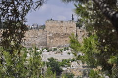 Иерусалим, золотой строб Стоковая Фотография