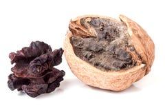 2 избаловали грецкие орехи при прессформа изолированная на белом крупном плане предпосылки Стоковые Изображения RF