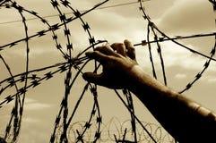 Избежание для свободы Колючая проволока с рукой стоковое фото