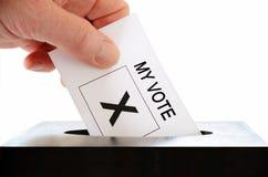 избиратель стоковая фотография rf