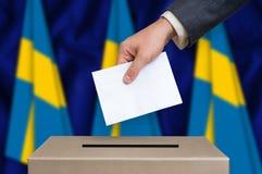 Избрание в Швеции - голосующ на урне для избирательных бюллетеней стоковое изображение rf