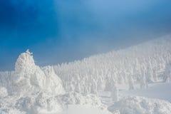 Изверг снега на горе zao стоковые фото