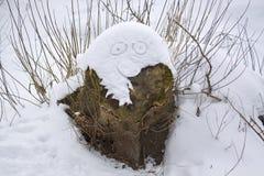 Изверг снега на пне Стоковое Изображение
