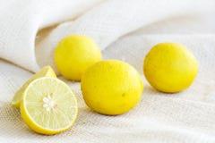 Известка лимона на белой предпосылке пеньки Стоковое Фото