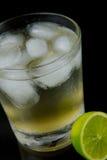 известка лимона bitters Стоковое Фото