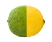 известка одно лимона Стоковые Изображения RF