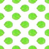 Известки или лимоны fruits pattern seamless рука нарисованная предпосылкой также вектор иллюстрации притяжки corel Стоковое Фото