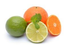 Известки и tangerines на белой предпосылке Стоковые Фотографии RF