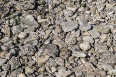 Известковые скалы на пляже Стоковое Изображение