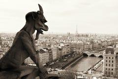 Нотр-Дам, Париж. Стоковые Фотографии RF