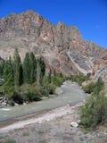 известный индюк дороги горы Стоковые Фотографии RF
