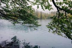 Известный национальный парк озер Plitvice Хорвата в Европе Стоковая Фотография