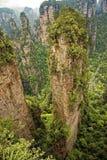 Известный штендер горы воплощения плавая, гор Zhangjiajie Стоковое Фото
