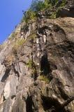 известняк скалы Стоковое Фото