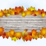 Извещение о древесины осени иллюстрация штока