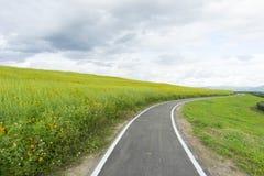 Извилистая дорога над зеленым холмом Стоковая Фотография RF