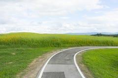 Извилистая дорога над зеленым холмом Стоковое фото RF
