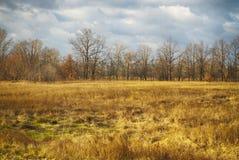 Извилистая дорога в поле на последней осени Стоковая Фотография