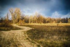 Извилистая дорога в поле на последней осени Стоковое Фото