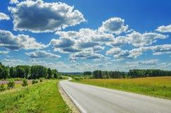 Извилистая дорога в полях Стоковые Изображения RF